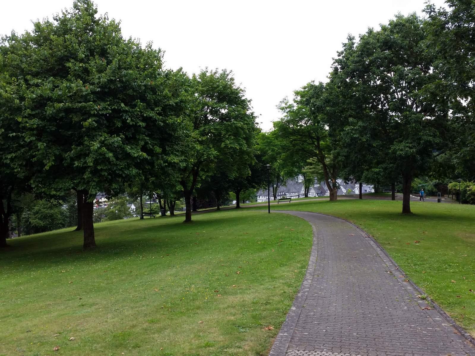 Antrag für kommunale Grünflächen einstimmig beschlossen