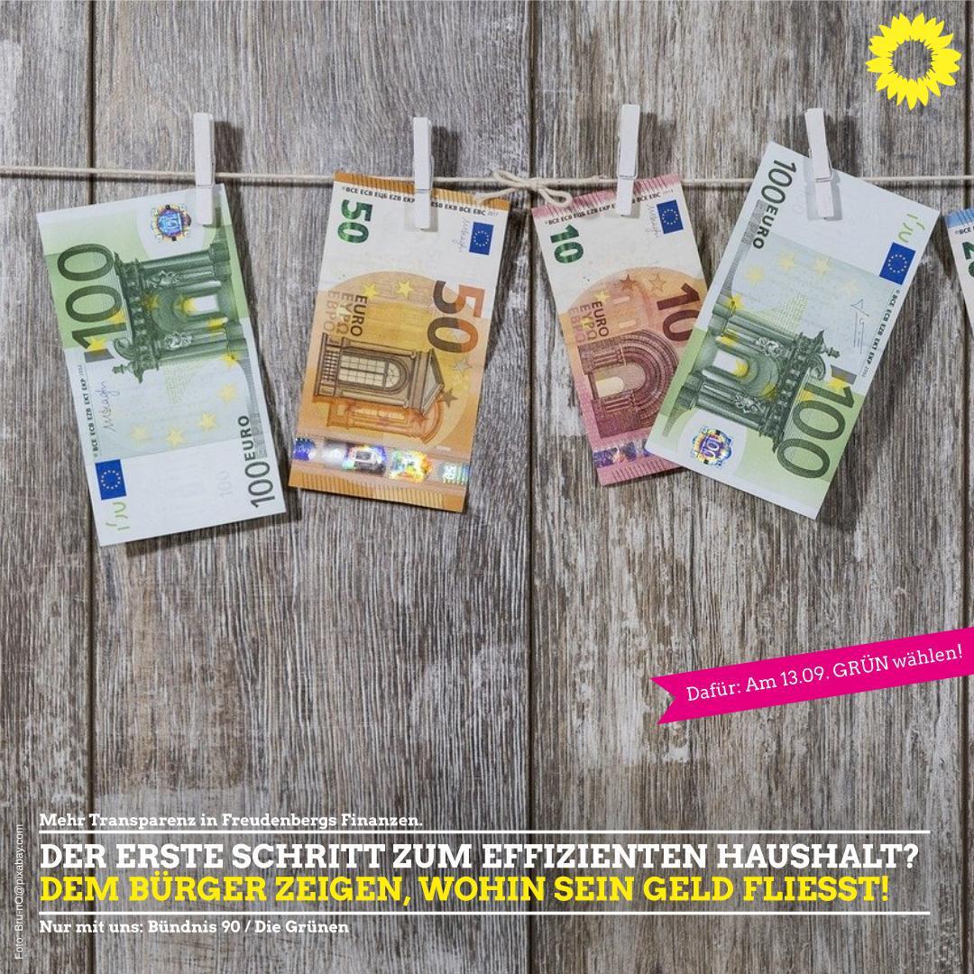 GRÜN ist: Mehr Transparenz in Freudenbergs Finanzen